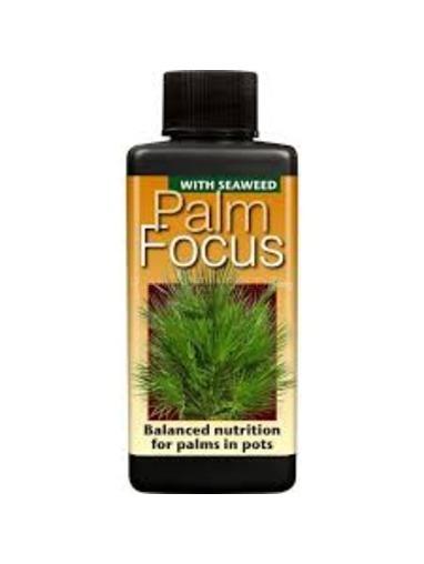 Palm Focus.