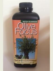 Olive Fertiliser