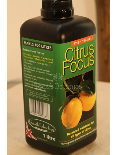 Citrus Fertiliser - Year round feed