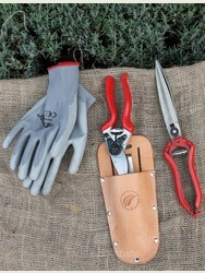 Essential Herbaceous Tidy Kit